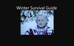 Stuck Inside: Winter Survival Guide
