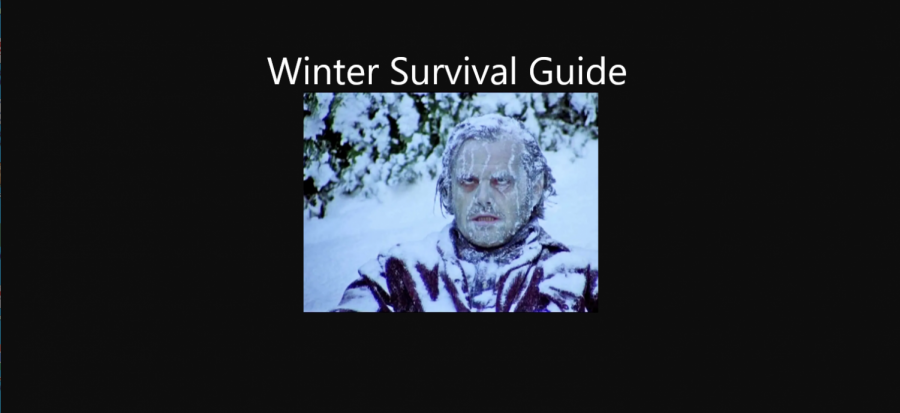 Stuck Inside: Winter Survival Guide