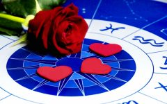 The Falcon Fortuneteller: February