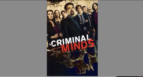 Criminal Minds, A TV Show Review